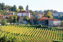 Likheterna med Alsace är många, bland annat den höga kvaliteten på många av vinerna.