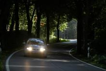 Många vägar på Rügen är inbäddade i tunnlar av bladverk, där solljuset bara sporadiskt kan leta sig fram.