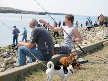 Sportfiske på Jylland – populärt när horngäddorna leker längs kusten.