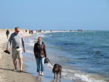 Danmarks populäraste promenad. Några kilometer från p-platsen till den smala udden längst i norr.