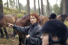 Lena Dahl på Haurida Skogshästsafari arrangerar ridturer på stora nordsvenskar.