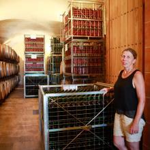 Vingårdarna ligger tätt på Mallorca. På Ca´n Vidalet vid Pollença får vi provsmaka viner guidad av Anja Köhler.