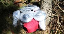 Stöldgömma i skogen. (Foto: Polisen).