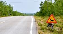 Skyltarna som varnar oss för renar i finska Sápmi, påminner en del om våra svenska älgskyltar.