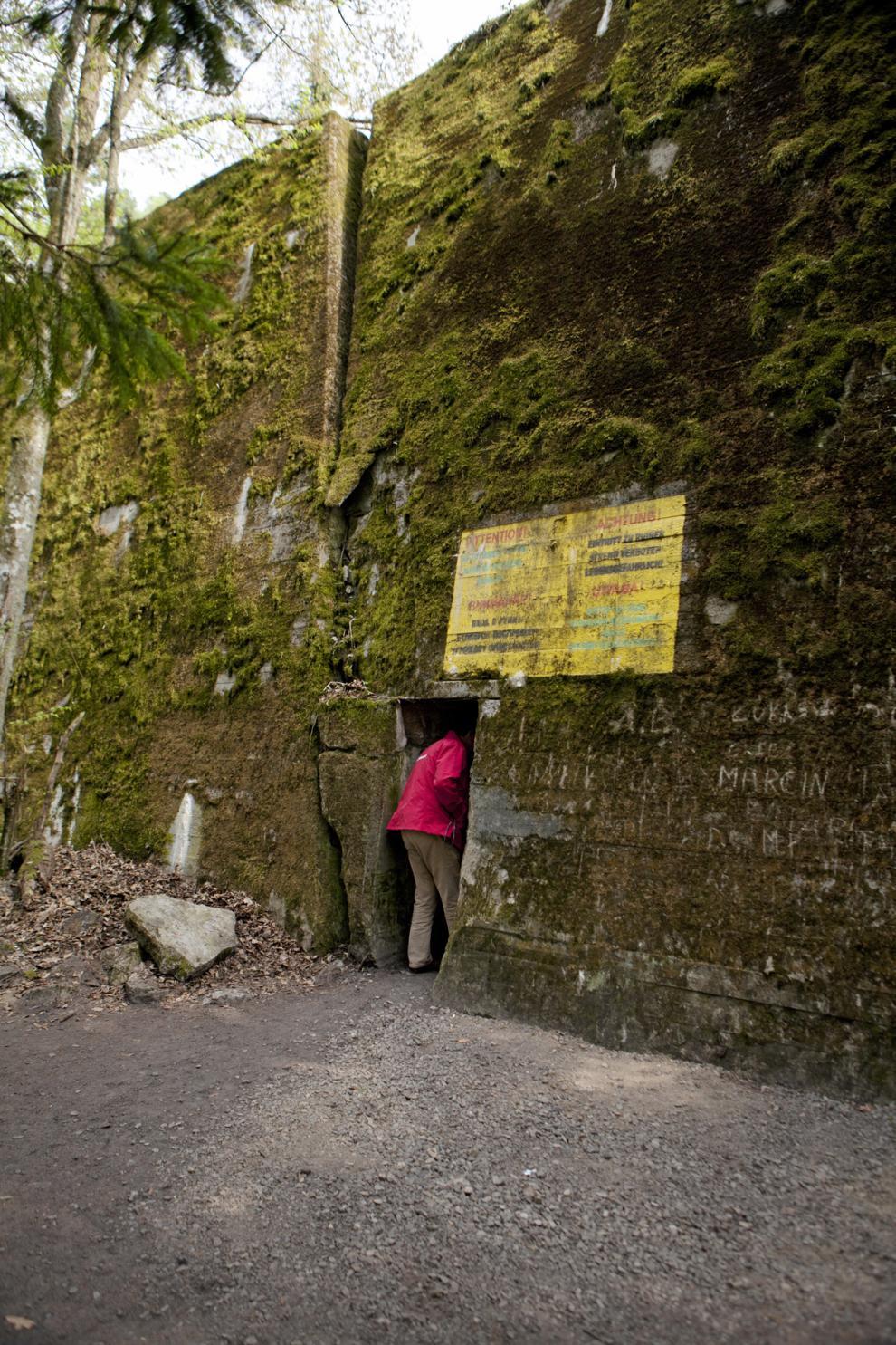 Nazisternas bunkrar ligger som små bergknallar i skogen. Jadwiga Korowaj guidar turister året om.