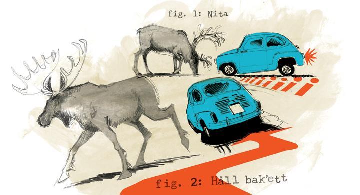 Två viktigare trafikregler