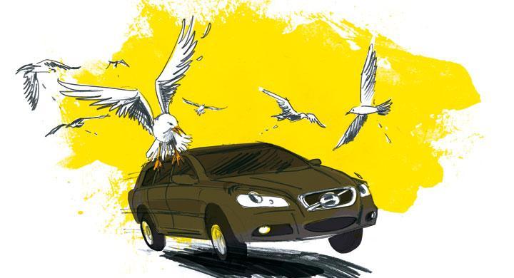 Bilfrågan: Ska inte lacken tåla träck?