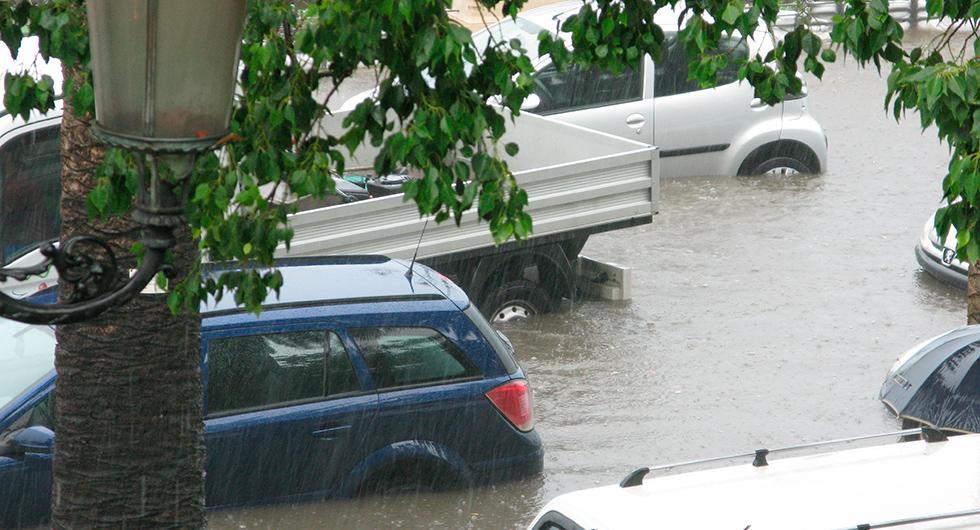 Varning för orkanskadade bilar från USA