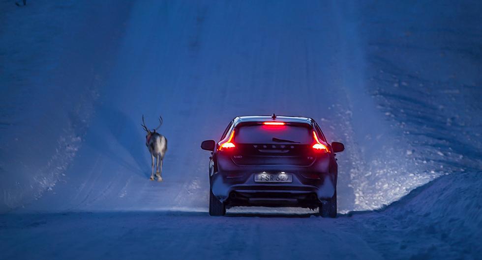 Svenskarna tycker att norrlänningar kör bäst