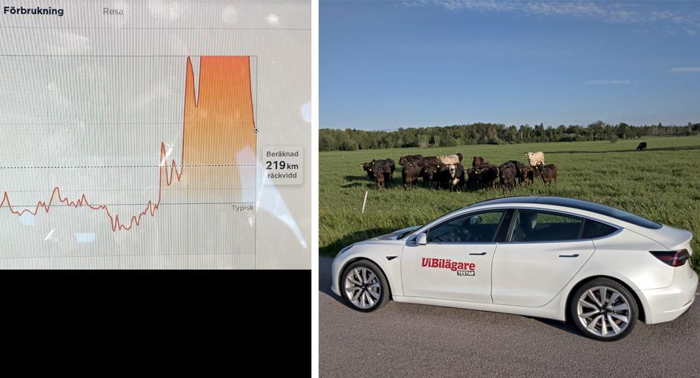 Häftig kurva i Tesla 3