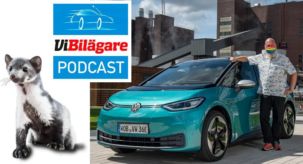 Volkswagen ID.3, biltuggande mårdar och privatköparnas favoritbil
