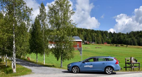 """""""Bo på lantgård"""" står det på skylten vid vägen. Det ser trevligt ut så vi följer allén upp till gården."""