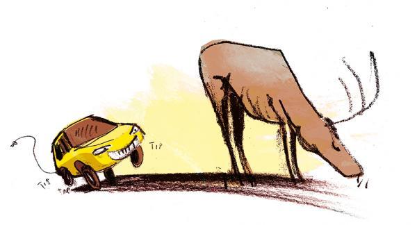 Frågeställaren undrar om en elbil skulle vara mer osäker att köra i vilttätt område områden med mycket vilt, eftersom djuren kanske inte hör att bilen kommer. Illustration: Johan Isaksson.