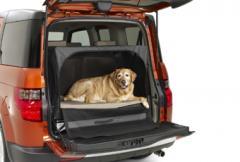 Honda satsar på hundar